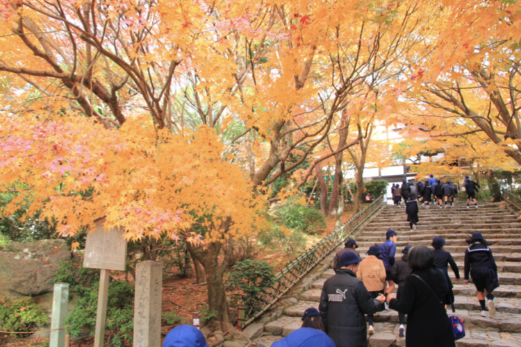 D学校さま 京都2泊3日