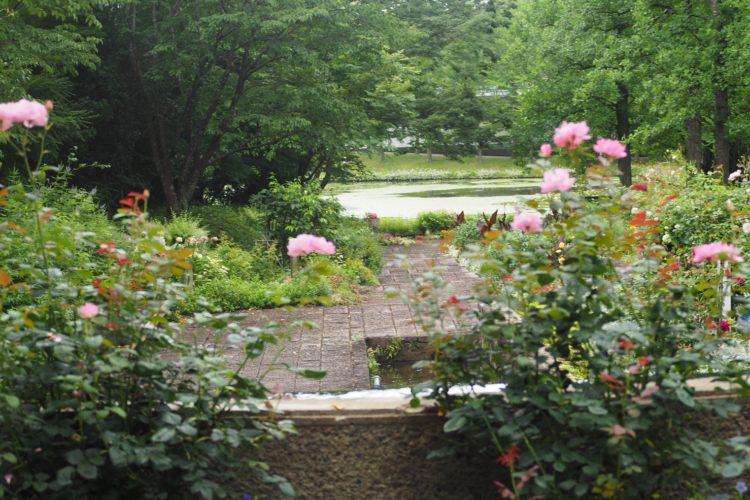 水戸市植物園!